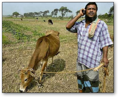 A farmer on a mobile. Innovation in action.